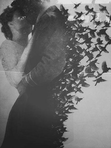 love-flies-away